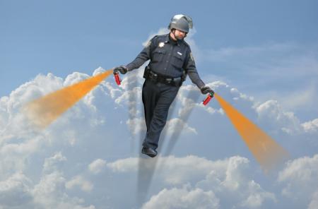 Picture 20 450x296 New meme: casual pepper spray cop