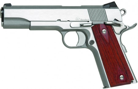 Dan Wesson Razorback left 450x290 CZs Five Year Plan