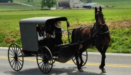Amish Buggy e1331576369571 450x259 Drunk Amish Teens Crash Buggy Into Police Car
